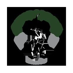 Skidmore_polo-01